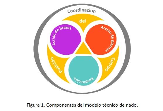 Figura 1 Antonio Oca