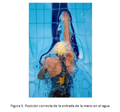 Figura 5 Antonio Oca